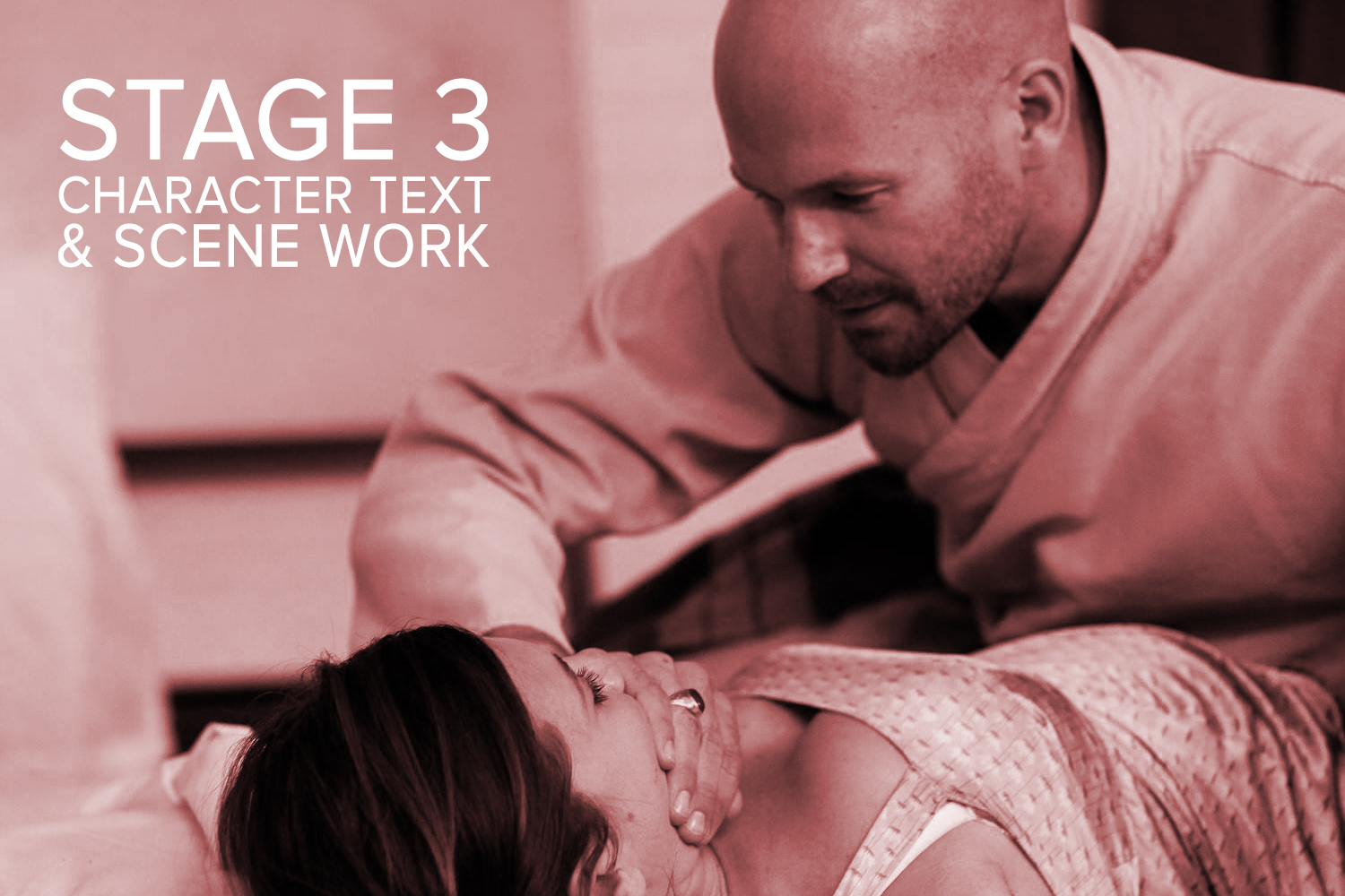 The Meisner Technique Stage 3: Character, Text and Scene Work